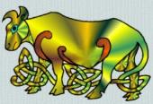 Celtic Bull