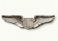 Flight wings in sterling silver